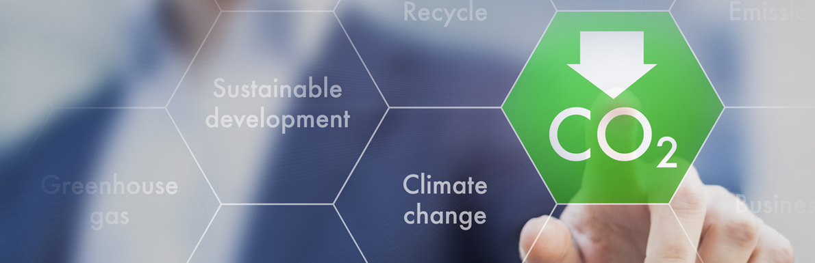 Carbon Credits Investment Claims